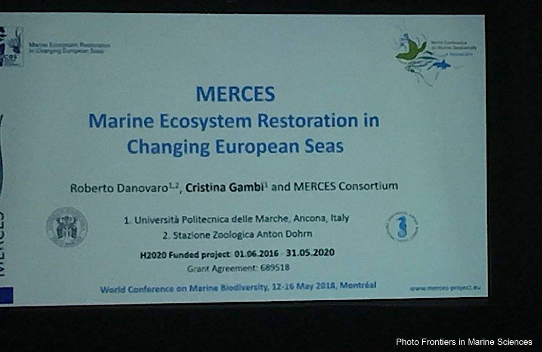 MERCES at the World Conference on Marine Biodiversity 2018 | Merces